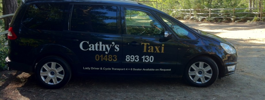 Local and Airport Taxi runs